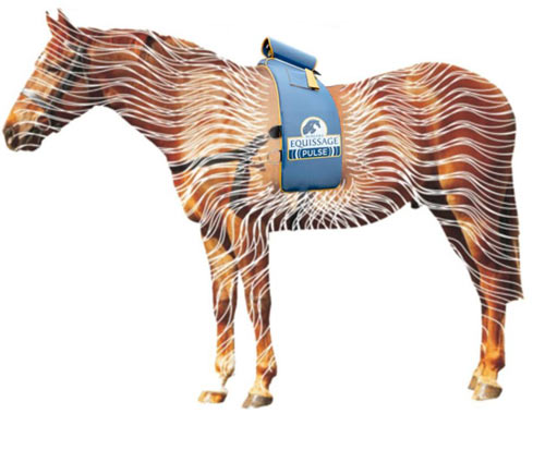 pulsehorse